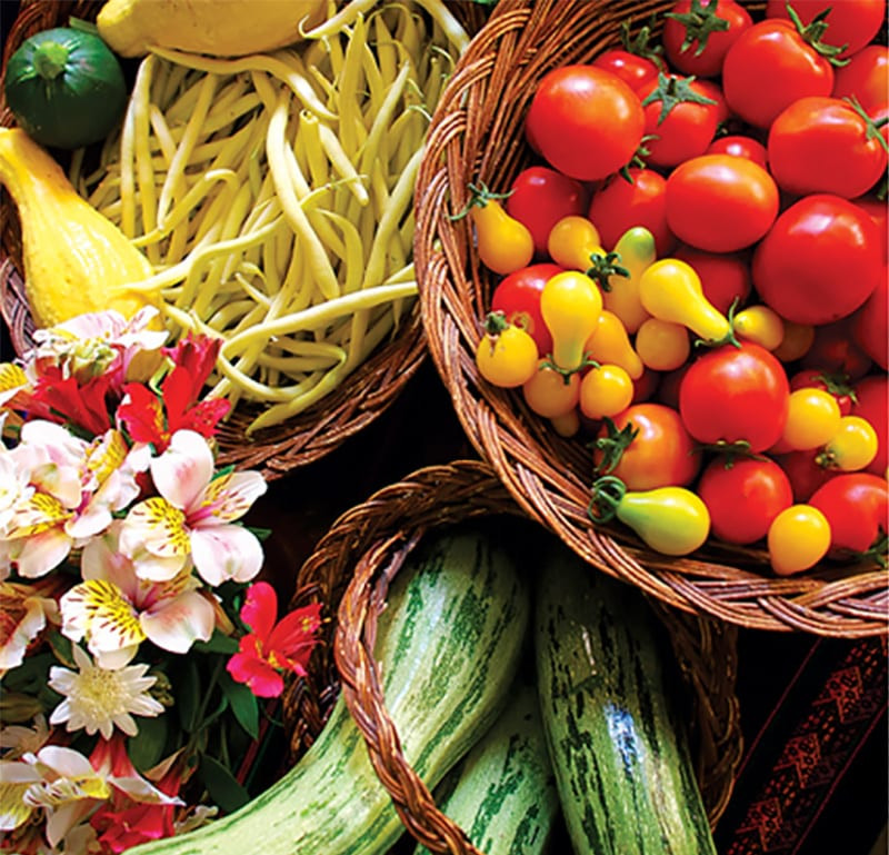 Gourmet organic vegetarian meals are served daily, using high-protein Andean grains and legumes, as well as organic, freshly harvested vegetables and salads grown on-site.