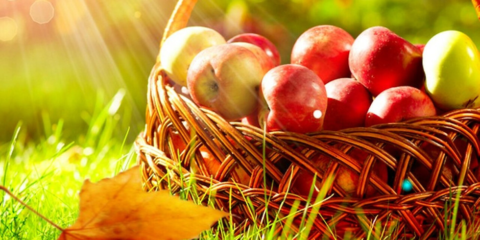 Fall Hiking: Apples and Yoga Retreat