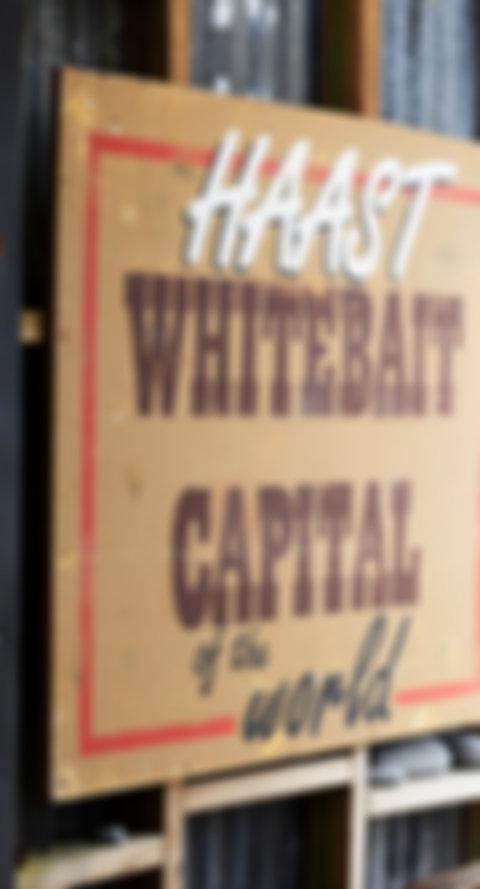 7446-Curly Tree Whitebait-West Coast-Fra