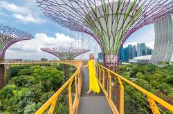 ocbc-skywalk-singapore.jpg