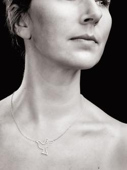 collier fibro