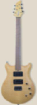 DLP-7.jpg