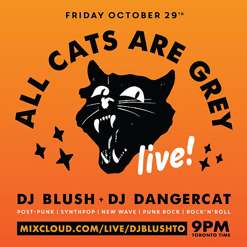 All-Cats-Are-Grey_Oct-2021.jpg