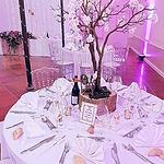 decoration-table-romantique-arbre-centre-table-disney-perpignan.jpg