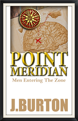 Entering the Zone           (An e-book)