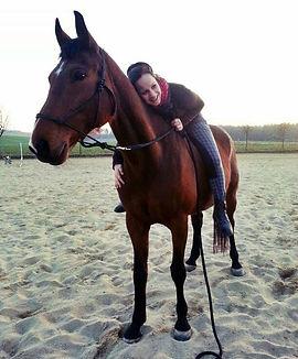Pferdetherapie Sandra Kaufer Pferdeosteopath Sachsen
