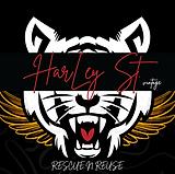 Harley ST Vintage