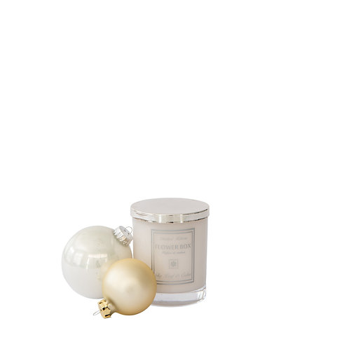 Fig Leaf & Cedar - Luminous White Candle