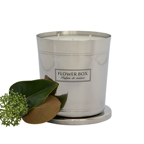 Magnolia & Green Leaves - 1kg Silver Candle