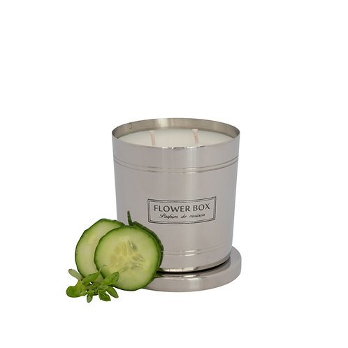 Cucumber & Wild Basil - 290g Silver Candle
