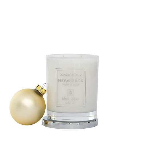 Citrus Grove No. 2 - Luminous White Candle