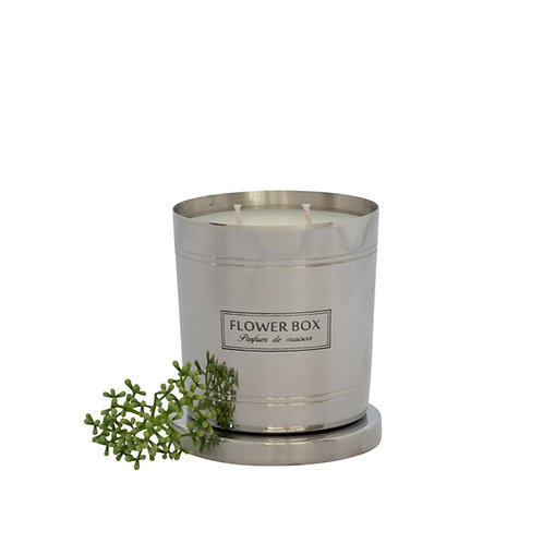 Magnolia & Green Leaves - 290g Silver Candle