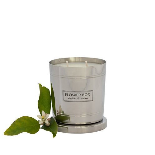 Fig Leaf & Cedar - 290g Silver Candle