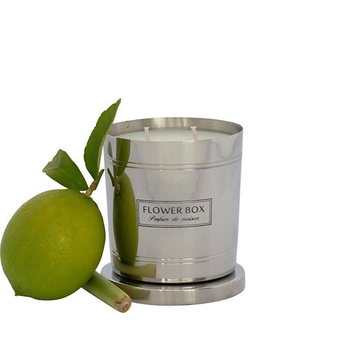 Fresh Lemongrass - 290g Silver Candle