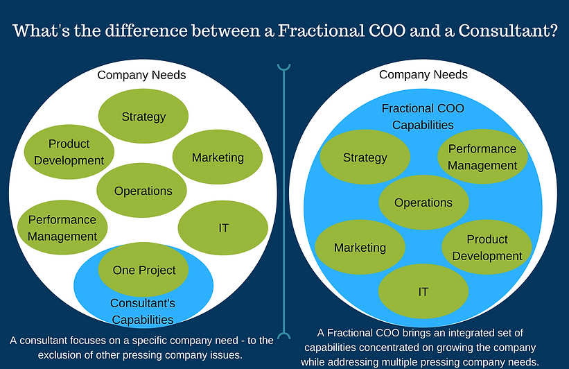 fractional COO vs consultant