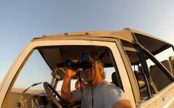Ron Harari - Desert private tours