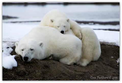 Naps are good!