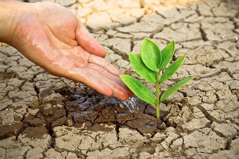 2. Drought.jpg