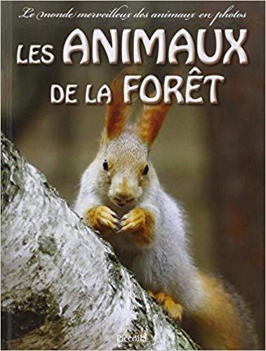 Le monde merveilleux des animaux de la forêt