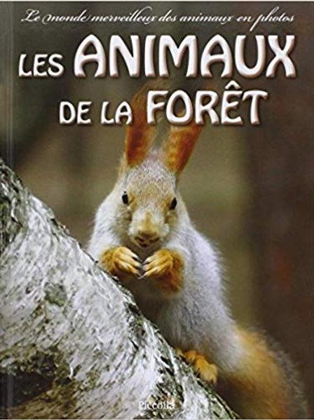 Le monde merveilleux des animaux en photos - les animaux de la forêt