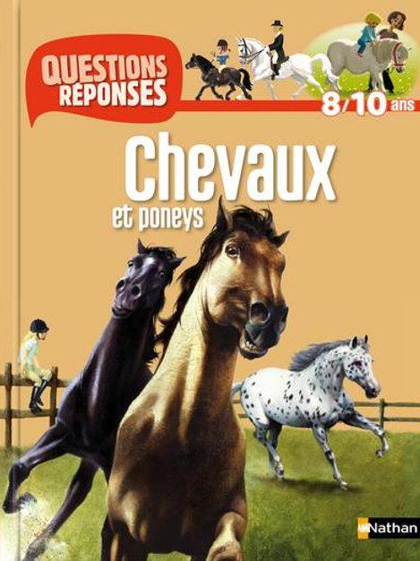 Chevaux et poneys Nathan