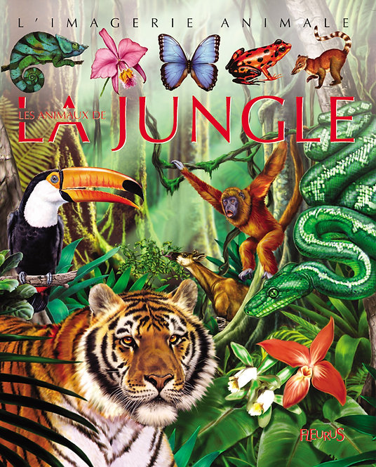 L'imagerie animale - La jungle