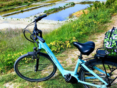 Want to do some biking?  Exploring ile de Re on Electric Bikes