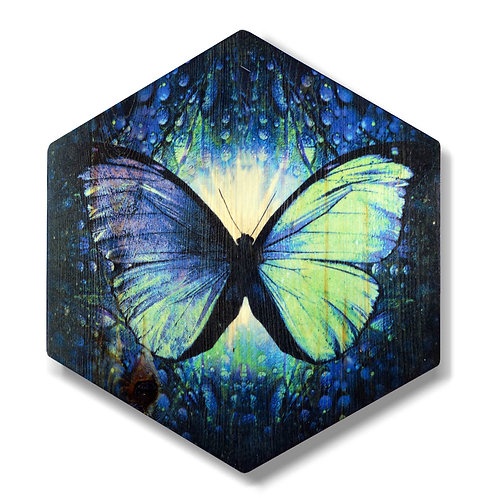"""Butterfly in Turquoise"" Hexagon Wood Art"