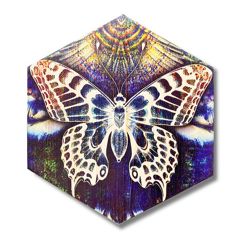 """Crystalline Butterfly"" Hexagon Wood Art"