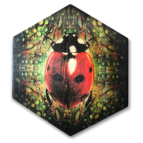 """Lady Bug"" in Green Hexagon Wood Art"