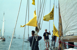 Parade of Sail on 12 August