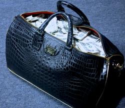 That new Louis Stewart Bag