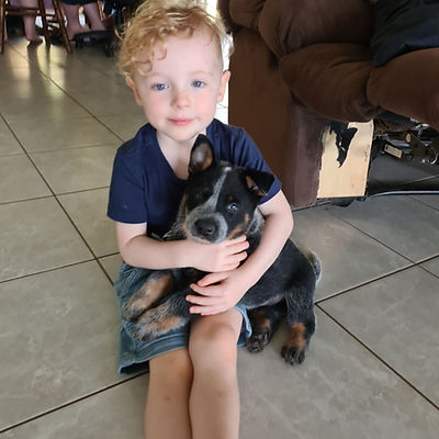 My Grandson Finn with little Errol_