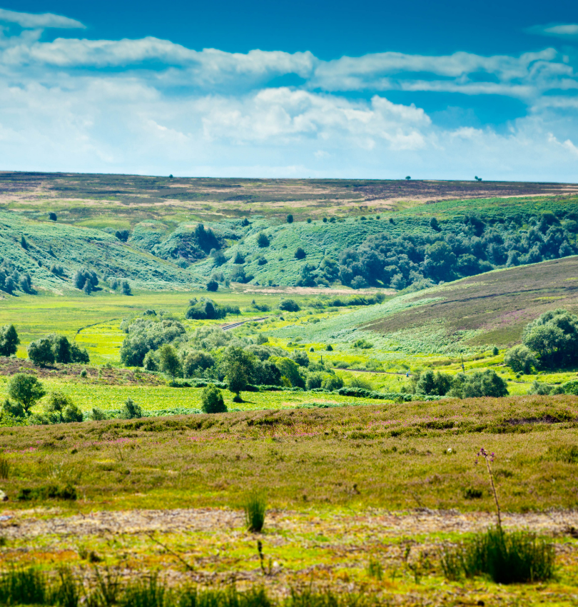 The Yorkshire Dales