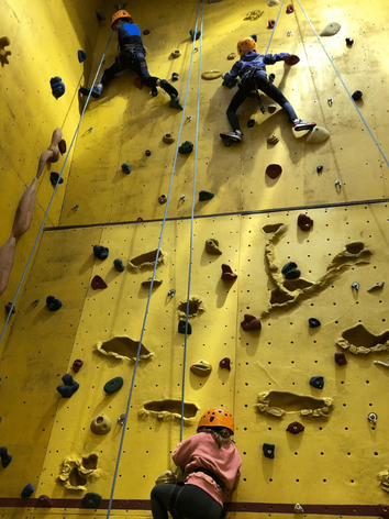 Indoor climbing wall HA