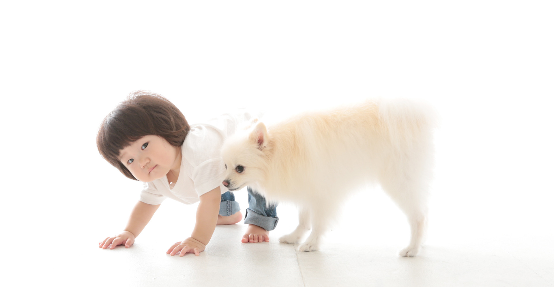 ペット撮影   横浜   川崎