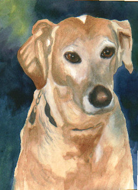 Cheris 2 Dog