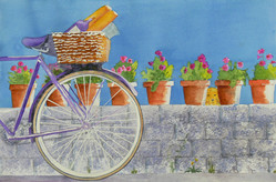 Bicycle Picnic