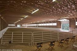 morgan horses, training, boarding