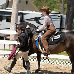 horseback riding lessons, nh, mass
