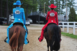 horseback riding lessons, boarding,