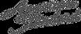 American-standard-logo-detail-5a4fe6b667