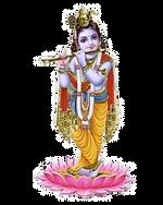 dharma_edited.png