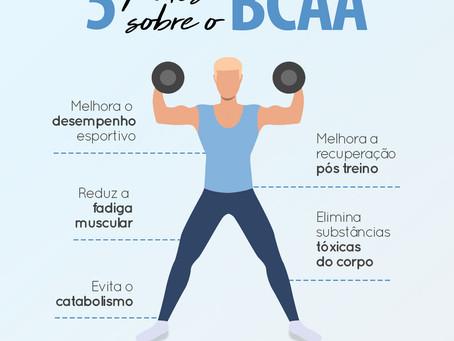 5 FATOS SOBRE O BCAA
