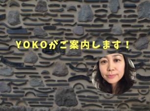 yoko_TOP.png