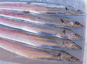 d太刀魚丼(太刀魚).jpg