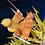 Thumbnail: ZENITSU AGATSUMA - FIGUARTS ZERO Thunder Breathing