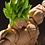 Thumbnail: BROLY FULL POWER - SH Figuarts