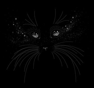 Galaxy Cat Eyes