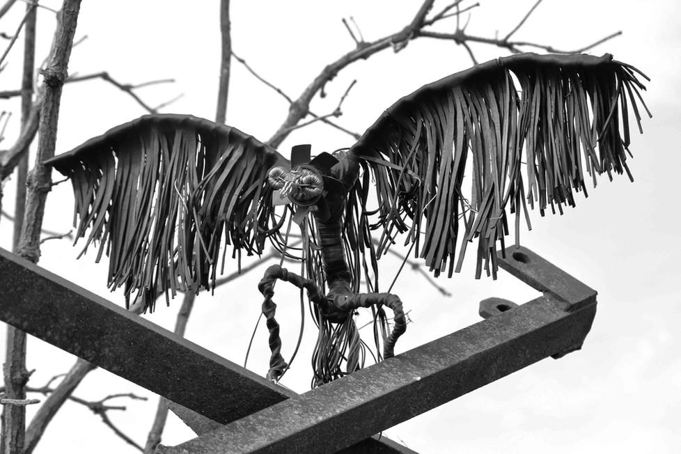 vautour recyclé sur du metal abandonné